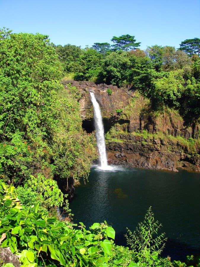 Download Rainbow Falls, Big Island, Hawaii Stock Image - Image: 9305675