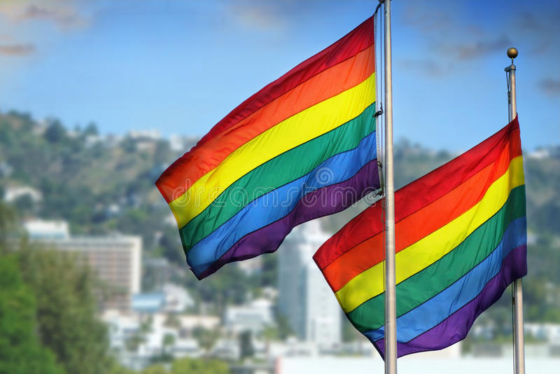 Rainbow flags royalty free stock image