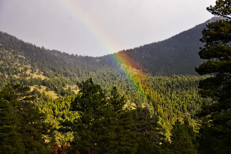 Rainbow fortunato immagini stock