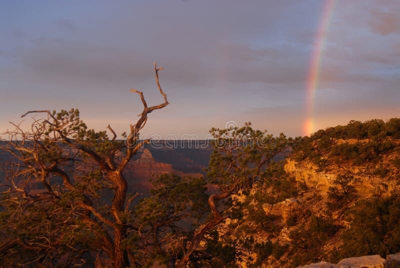 Rainbow at Grand Canyon royalty free stock images