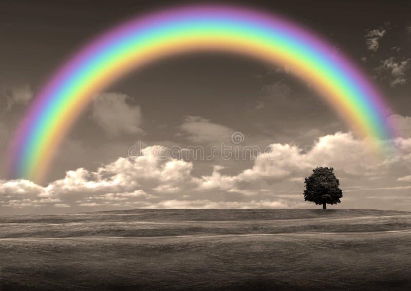 Rainbow in the gray sky stock image