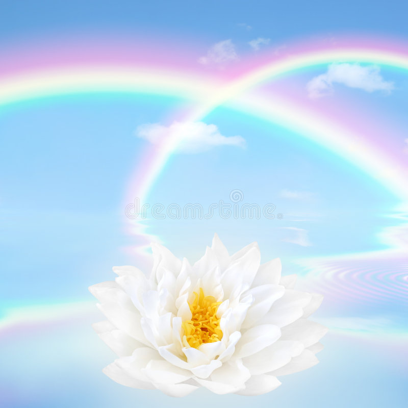 Rainbow and Lotus Lily Flower royalty free stock photos
