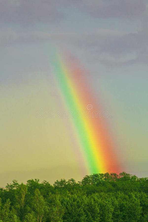 Rainbow of love. All that touches the light becomes light in turn