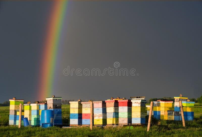 Rainbow- Natures Irony royalty free stock photography