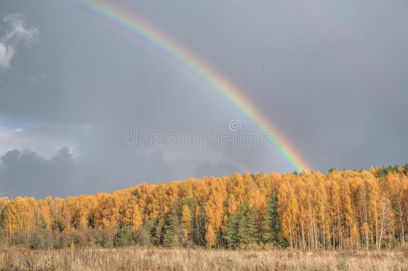 Rainbow over the autumn forest stock photography