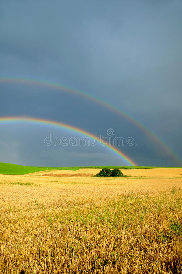 Download Rainbow over the field stock image. Image of pasture - 15745085