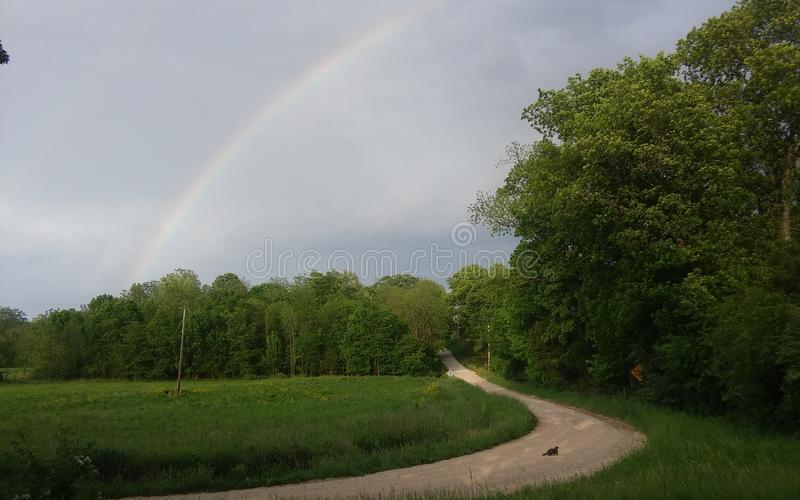 Rainbow over forest royalty free stock photos