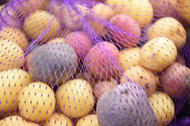 Rainbow potato stock photography