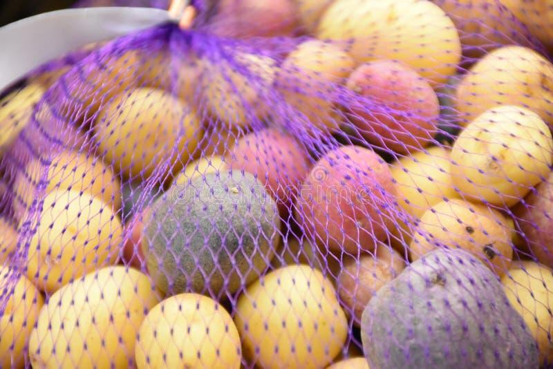 Rainbow potato stock image stock image