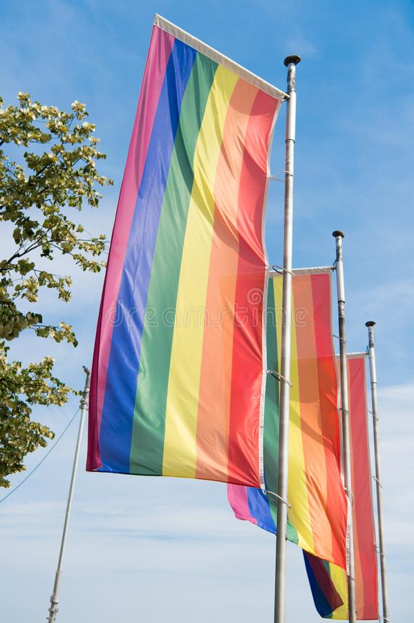 Rainbow pride flags on flagpoles against blue sky. LGBT pride parade. Pride parades outdoor events celebrating lesbian. Gay bisexual transgender social royalty free stock photo