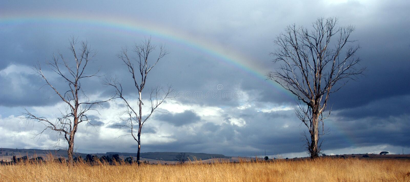 Rainbow reale immagini stock