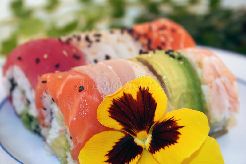 A Rainbow Roll of Colorful Sushi. A delicious rainbow roll of sushi includes tuna, shrimp, albacore, white fish, salmon avocado and more. A Japanese Favorite royalty free stock image