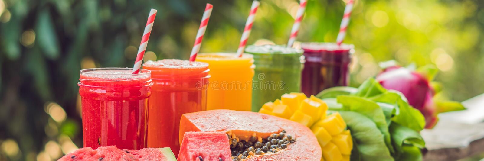 Rainbow from smoothies. Watermelon, papaya, mango, spinach and dragon fruit. Smoothies, juices, beverages, drinks royalty free stock image