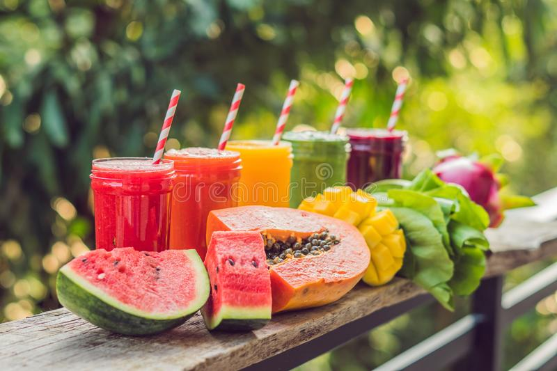 Rainbow from smoothies. Watermelon, papaya, mango, spinach and d royalty free stock photography