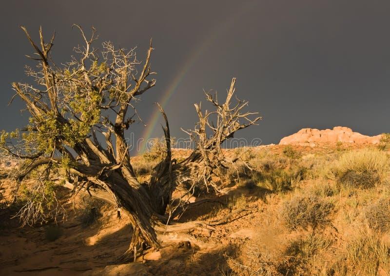 Rainbow sopra la sosta nazionale degli archi