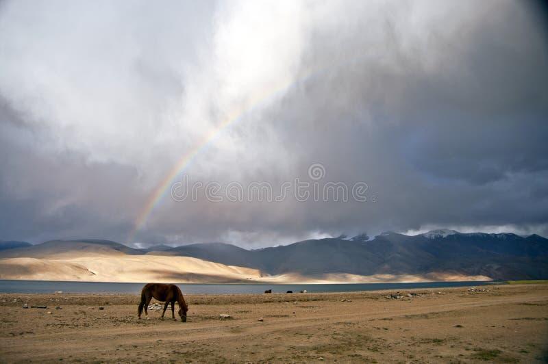 A rainbow after the storm, Tso-moriri, India stock photo