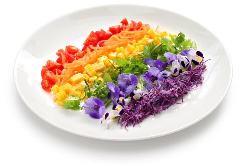 Rainbow super salad. On white background stock photography