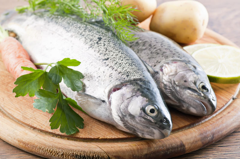 Rainbow Trout. With fresh vegetables royalty free stock image