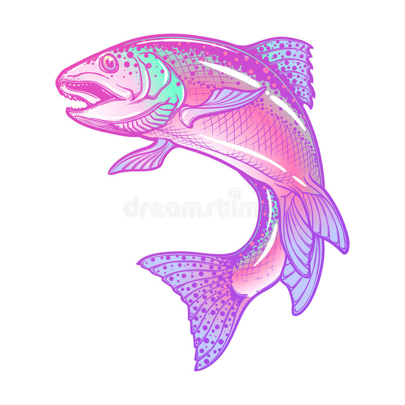 Rainbow trout color drawing. Realistic intricate drawing of the rainbow trout jumping out. Pastel color hand drawing on white background. Concept art for royalty free illustration