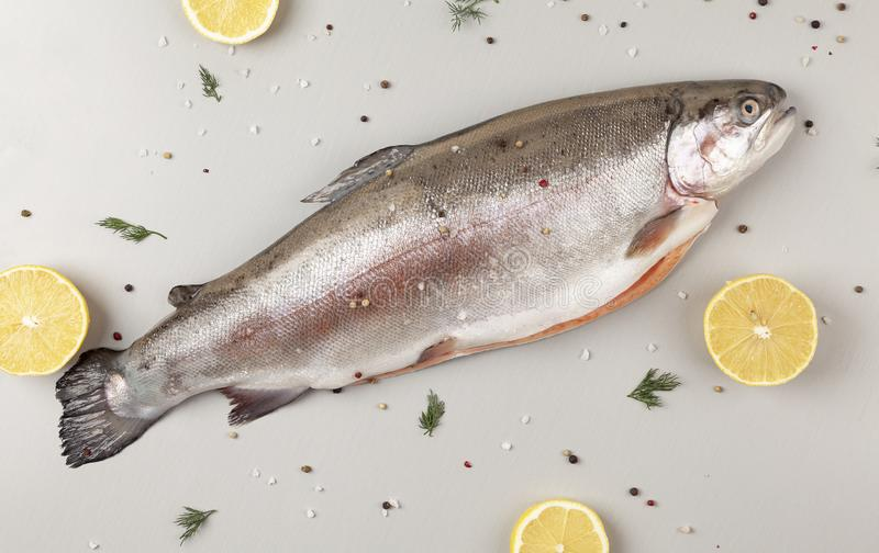 Rainbow trout with herbs and spices ready to cook. Fresh rainbow trout with salt, pepper and lemon ingredients. royalty free stock photography