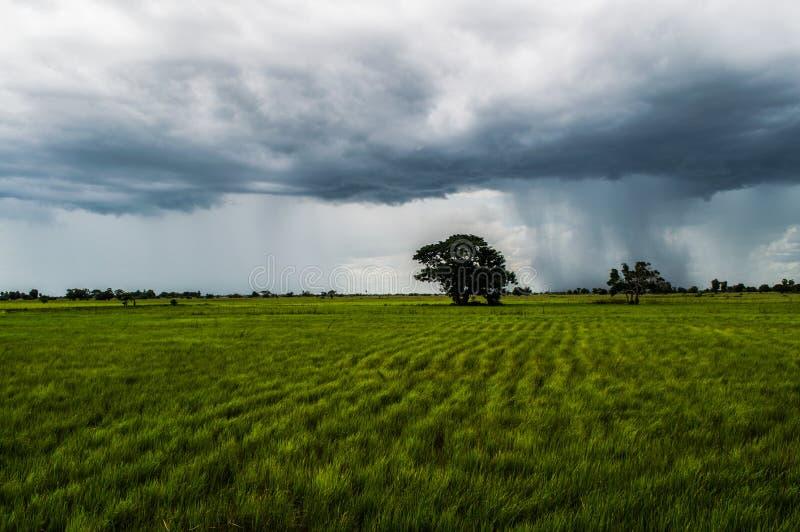 Rainclouds lourd dans la campagne cambodgienne près de Battambang image stock