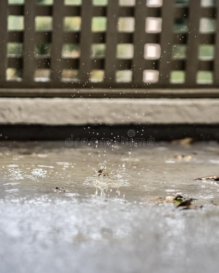 Raindrop Splash. A raindrop splash frozen in time in a moment of refreshing beauty stock images