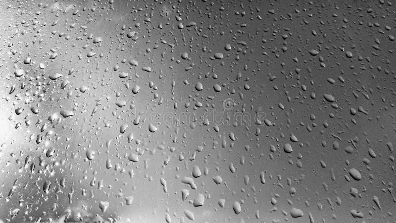 Raindrops на окне стоковая фотография