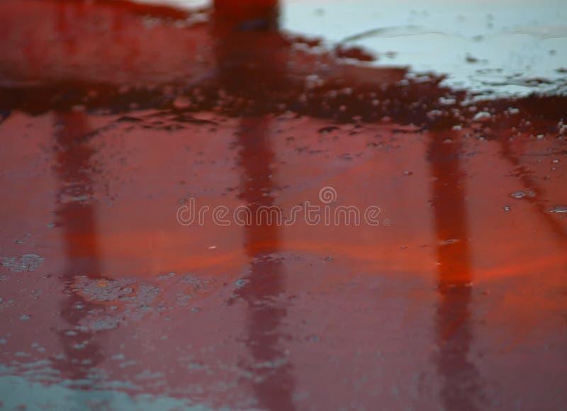 raindrops imagens de stock royalty free