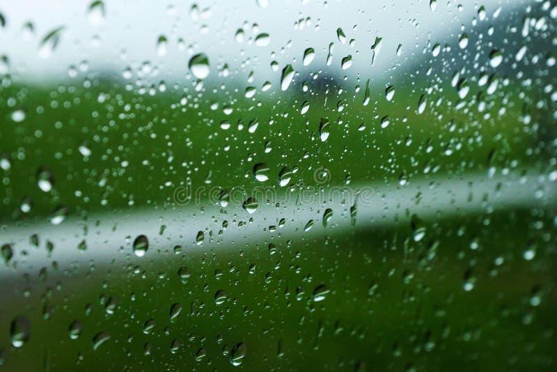 raindrops fotos de archivo libres de regalías
