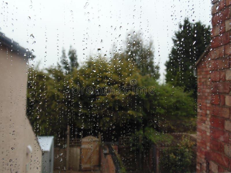 raindrops стоковое изображение rf