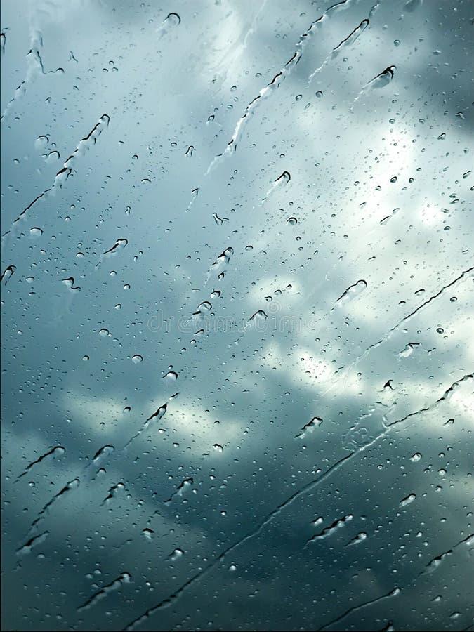 raindrops fotos de stock royalty free