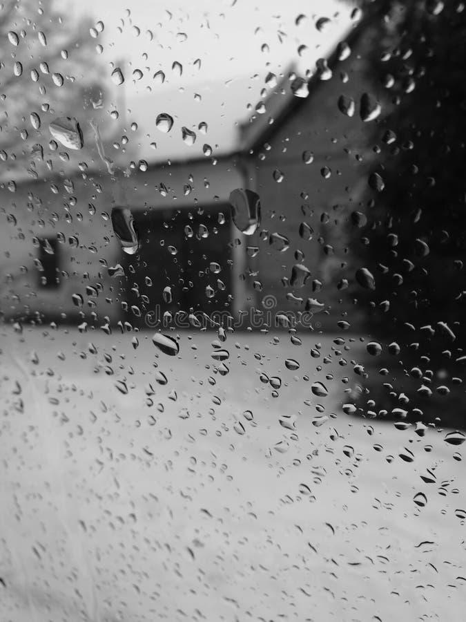 raindrops стоковые изображения rf