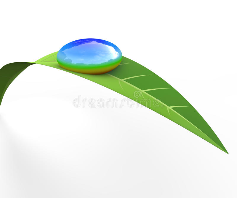 Raindrops. Drop the remaining grass. Blue sky reflected in the water. Crisp sky. Landscape feel natural. I be conscious of the natural environment. Image Eco vector illustration