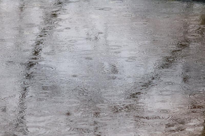 Raindrops on Puddle royalty free stock image