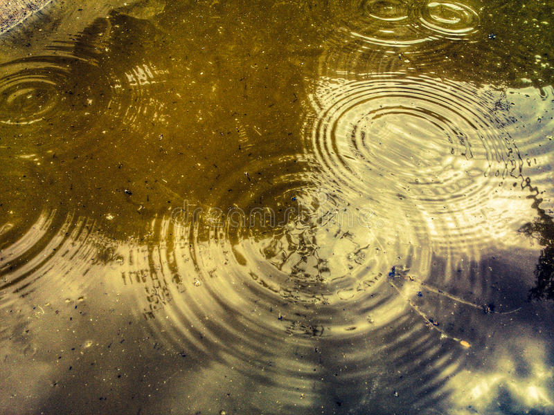 Raindrops stock images