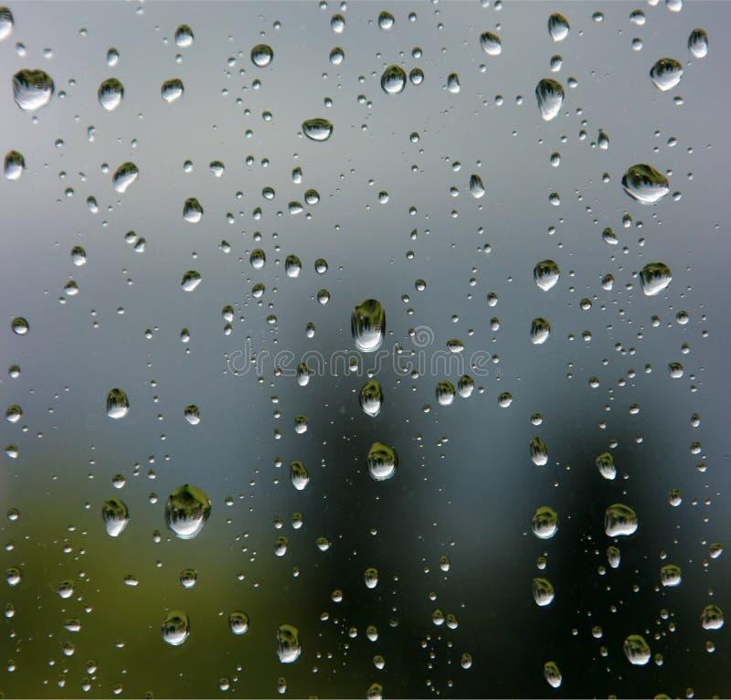 Raindrops on the window royalty free stock image
