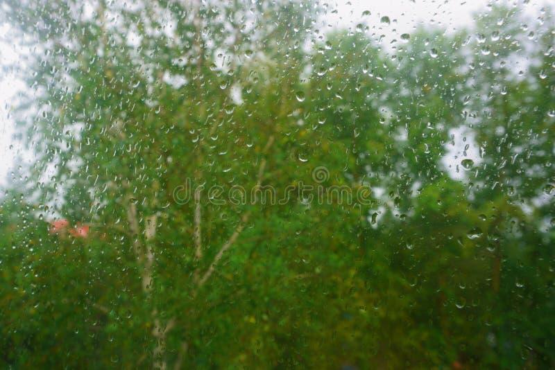 Raindrops on window. autumn. Raindrops on window pane. first days of autumn royalty free stock photos