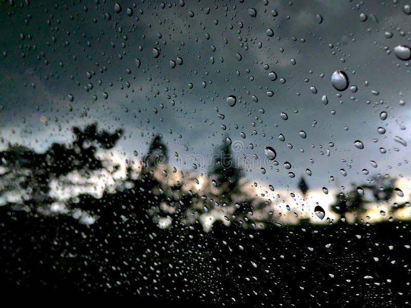 Raindrops on the window stock photos
