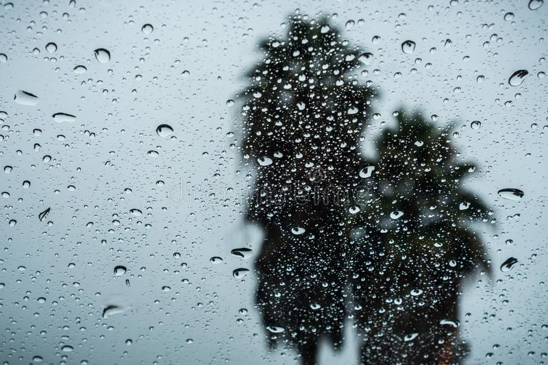 Raindrops on the window on a rainy day; two palm trees in the background; California royalty free stock image