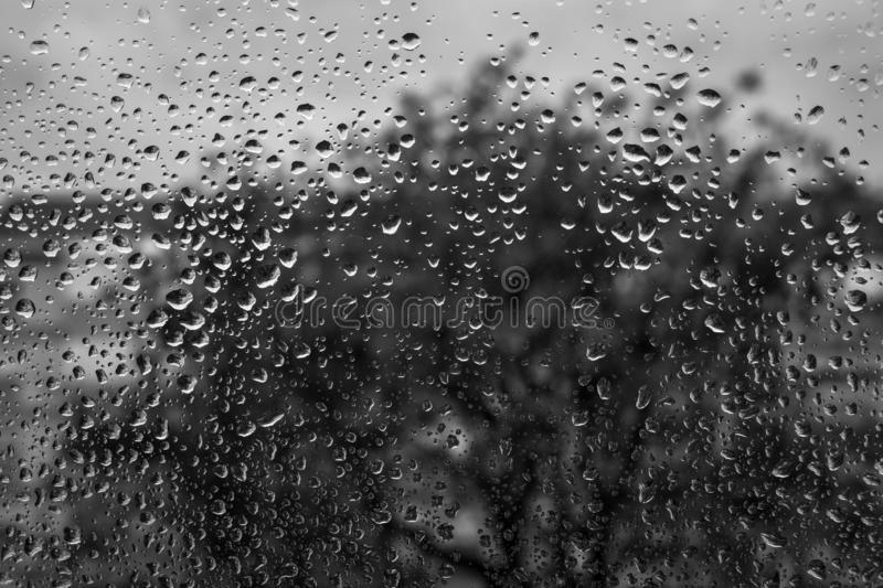 Raindrops. Window. Season. Portugal. Black and white photo. Black and white background b&w royalty free stock images