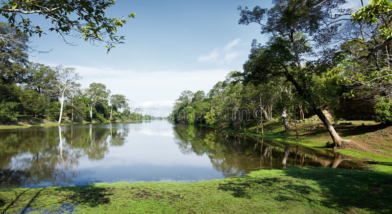 Download Rainforest stock photo. Image of jungle, water, lake, river - 5263920