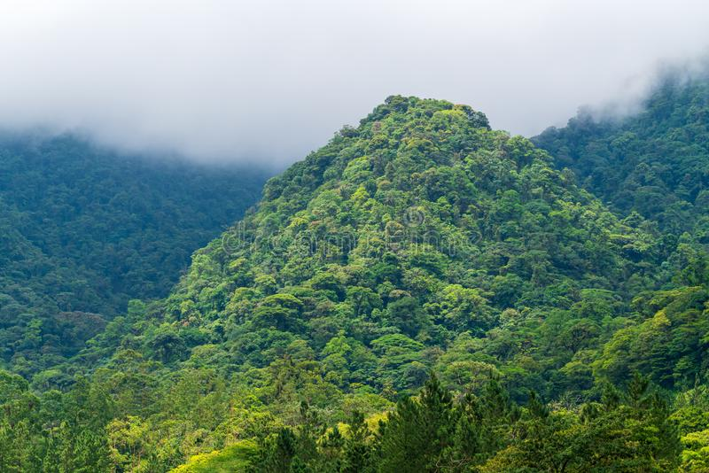 Rainforest covering a small hill in a valley near Arenal, Alajuela, Costa Rica. Green, lush, nature, parks, central, america, cloud, fertile, tropical, tropics stock image