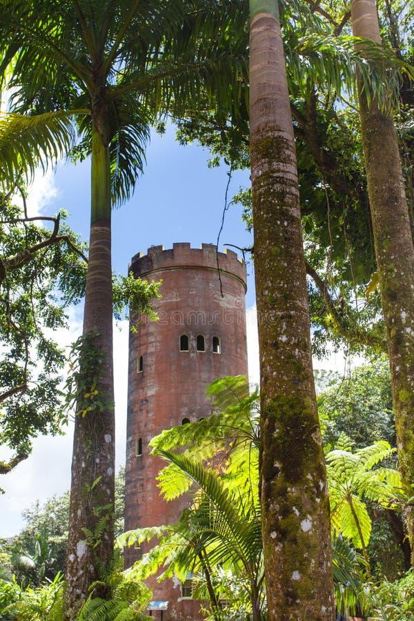 Rainforest för El Yunque i det Puerto Rico Yokahu Observation tornet royaltyfri fotografi