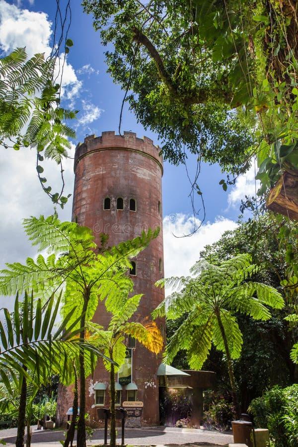 Rainforest för El Yunque i det Puerto Rico Yokahu Observation tornet royaltyfria foton