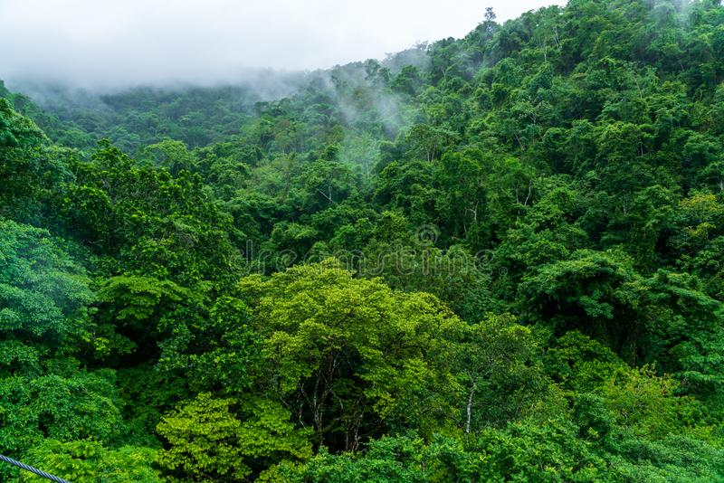 Rainforest in the hills surrounding Jaco, Puntarenas, Costa Rica stock photo
