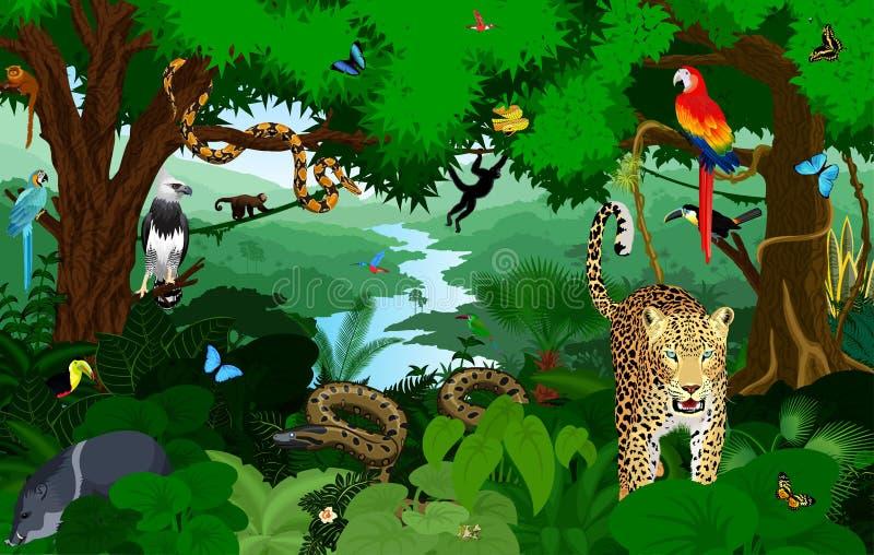 Rainforest med djurvektorillustrationen Grön tropisk skogdjungel för vektor med papegojor, jaguar, boa, harpy, apa royaltyfri illustrationer