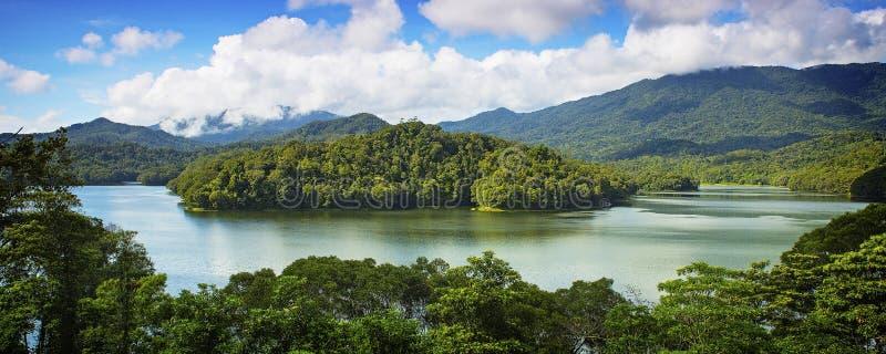 Rainforest sjö fotografering för bildbyråer