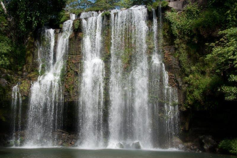Rainforest Waterfall stock photos