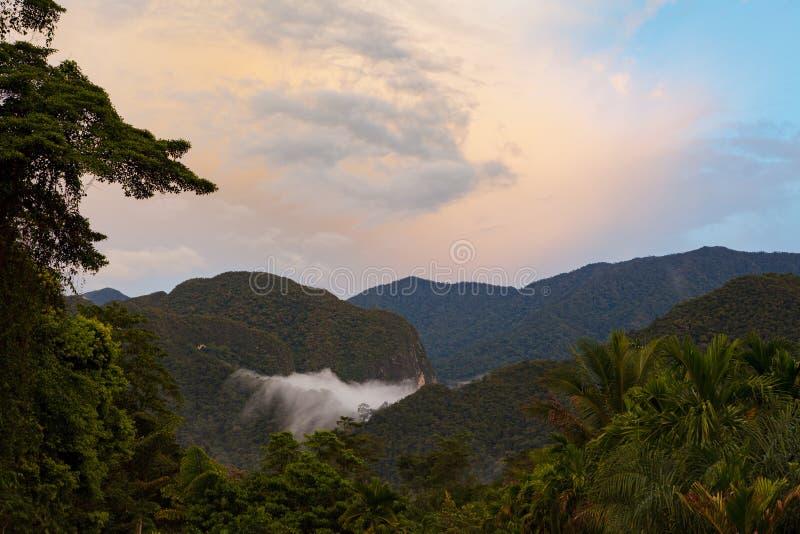 Rainforestlandskap från den Gunung Mulu nationalparken Borneo Malaysia royaltyfri bild