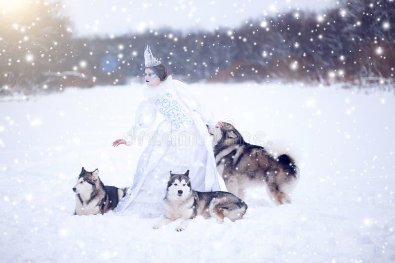 Rainha bonita da neve com cães foto de stock